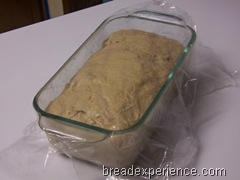 sprouted-wheat-bread 029