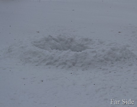 snow circle