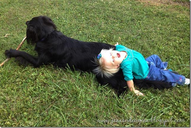puppy love 10