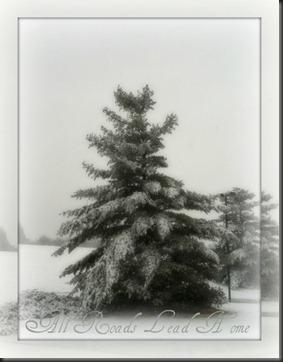 First snow of the season ARLH