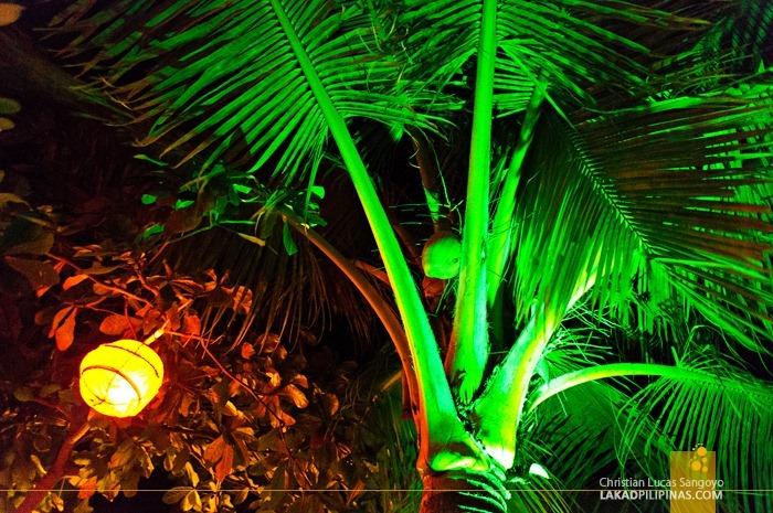 Among Trees at Ocean Vida Restaurant at Malapascua Island