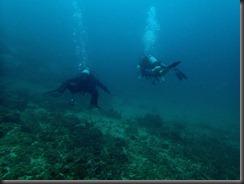 PC - diving