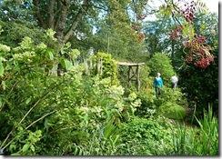 liz garden3