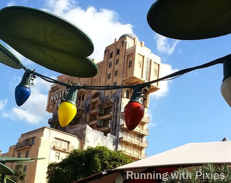 Bug's Eye View of Tower of Terror