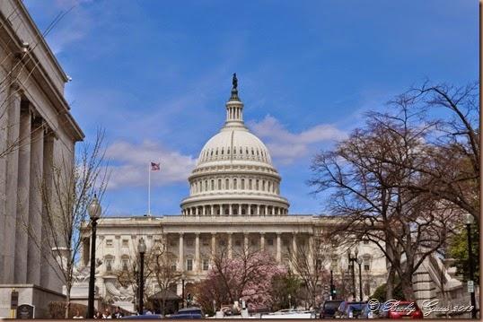 04-08-14 Capitol 42