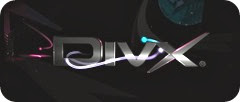 DivX Web Player Plugin