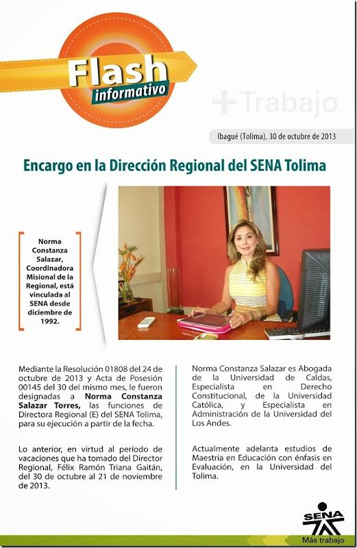 flash_2013_propuesta_formal