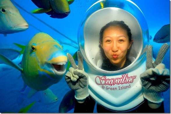 seawalker-photogenic-fish-7
