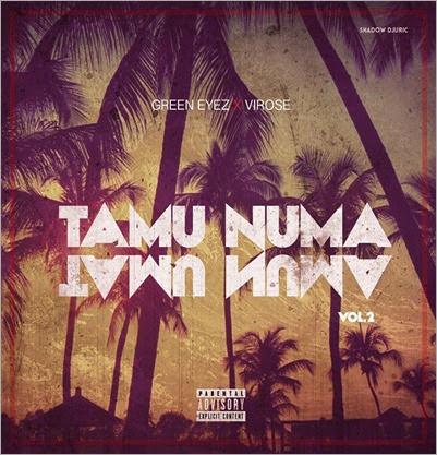 TAMU-NUMA-Vol.2-Capa