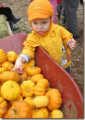 10-15 Pumpkin Patch 24