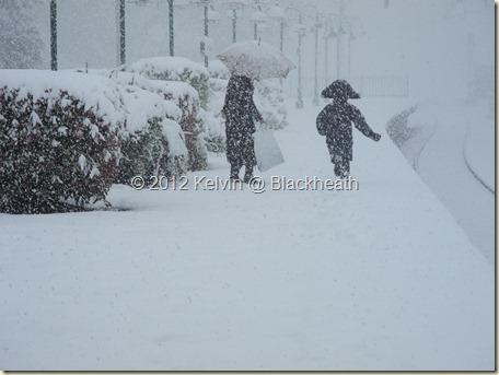 Blackheath snow 17
