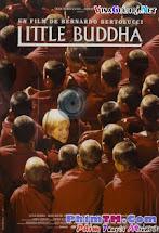 Vị Tiểu Phật - Little Buddha