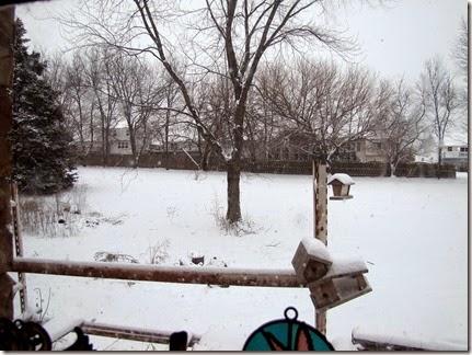 snow0216-15b