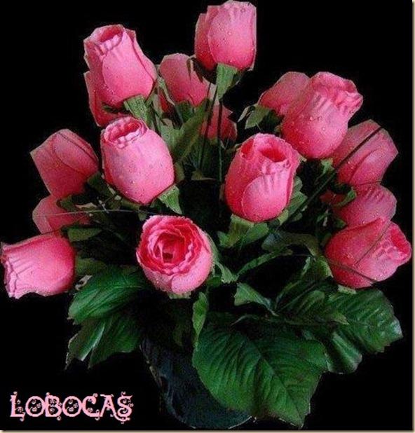 rosas-LoBocAS-9010