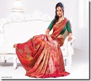 Bhavana_Bridal_Saree_Show (4)