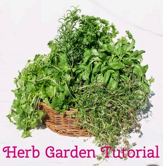 Herb-Garden-Tutorial