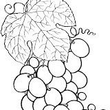 Fruit%2520and%2520berries%2520coloring%2520pages%25203.jpg