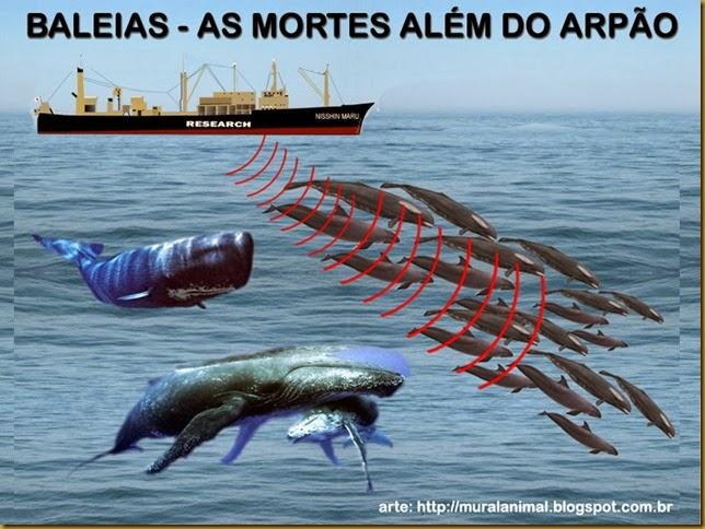 Baleias_mortes-alem-arpao