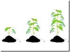 mejorar-crecer