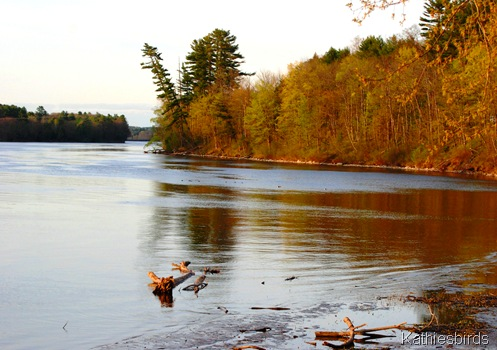 9. Kennebec River-kab