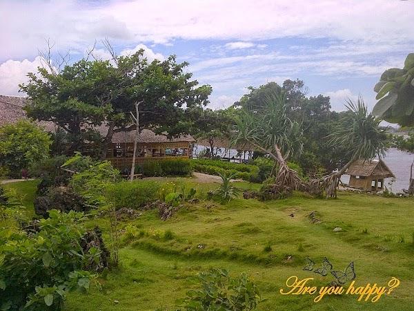 8_Magic Island.jpg