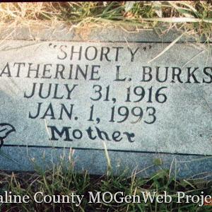 Catherine L Burks