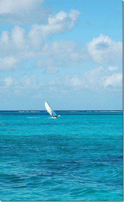 Turks & Caicos 2011 277 1 copy