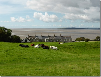 Morecambe Bay Walk (57)