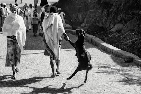 Doi romani si-un tricolor in jurul lumii: Lalibela, Etiopia