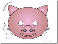 cerdos (3)