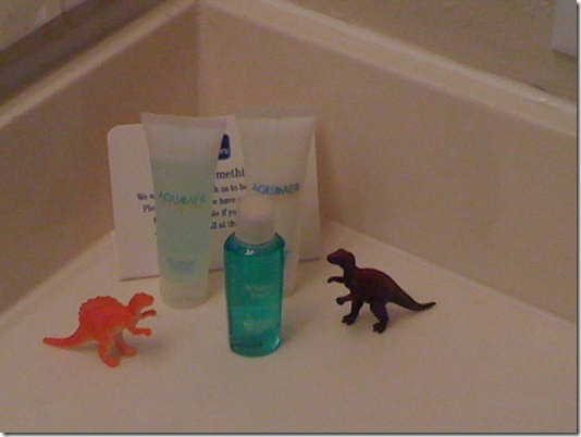 dinosaurs in the bathroom_thumb[2]