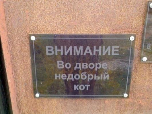 5718655-R3L8T8D-650-1400479735_podborka-udivitelnyh-marazmov-1