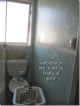 toilet copy