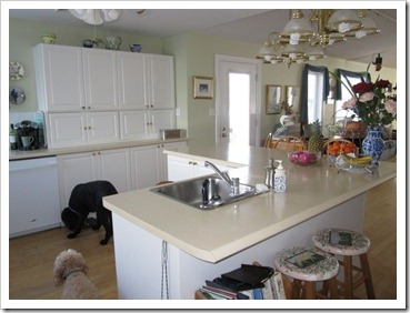 20120129_kitchen_004