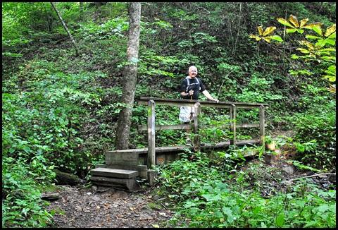 20f - Vogel SP - Bear Hair Trail - Bridge over stream where we found the buckeyes
