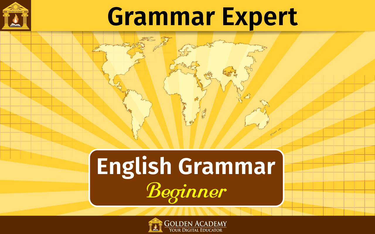 Grammar Expert : Beginner Screenshot 6