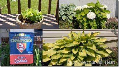 Garden May 20122