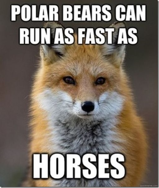 fox-facts-meme-21
