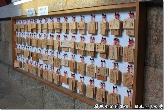 日本奈良-東大寺19
