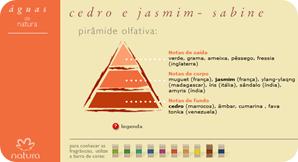 Pirâmide olfativa de Cedro e Jasmim