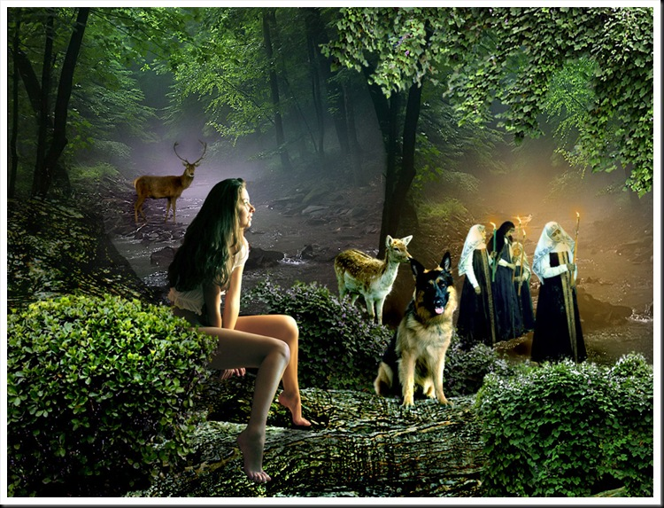la-procesion-del-bosque