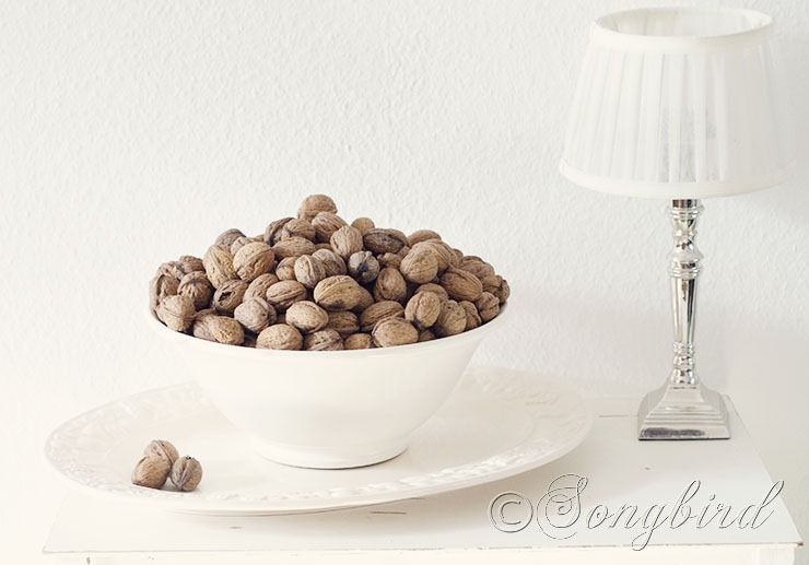 Bowl with Walnuts 1
