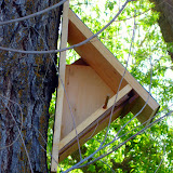 Silke's birdhouse sits empty, as the birds chose to nest on the ground.
