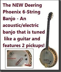 New Banjo Bridges Acoustic and Electric