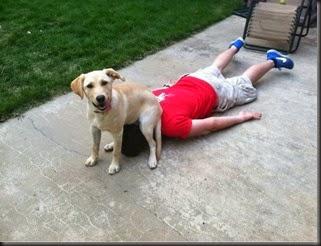 dogs_assholes_03
