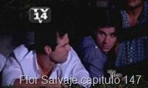 Flor Salvaje capitulo 147