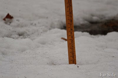 8 inches of snow March 31