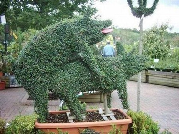 Topiary Gone Wild