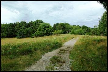 Plan C-Town walk 156