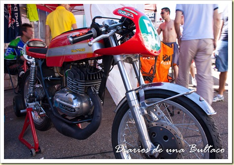 Fran55-1